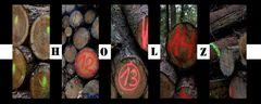 Neulich im Wald...fehlten viele Bäume...zumindest in der bekannten stehenden Form!