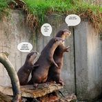 Neulich im Zoo Wuppertal