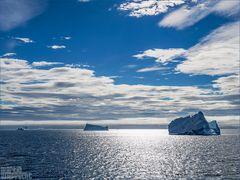 Neulich, irgendwo vor Grönland