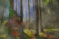 Neulich mal im Zauberwald ......