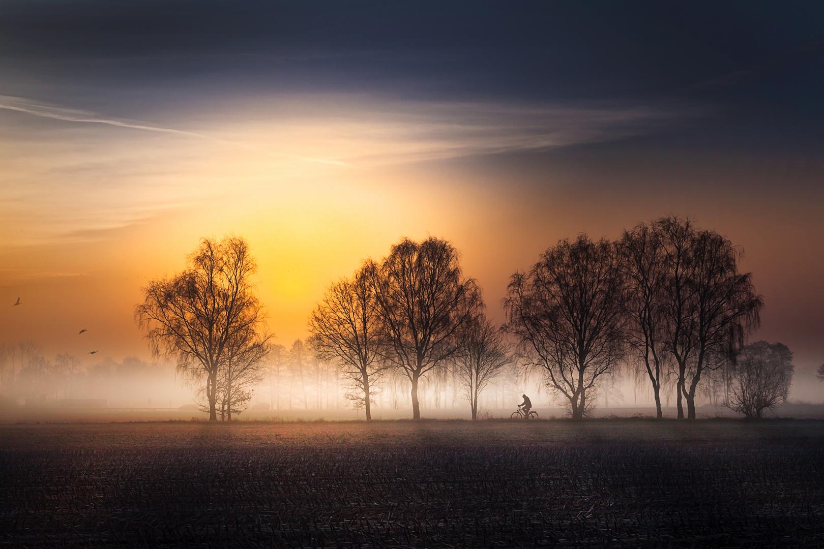 Neulich morgens im Nebel