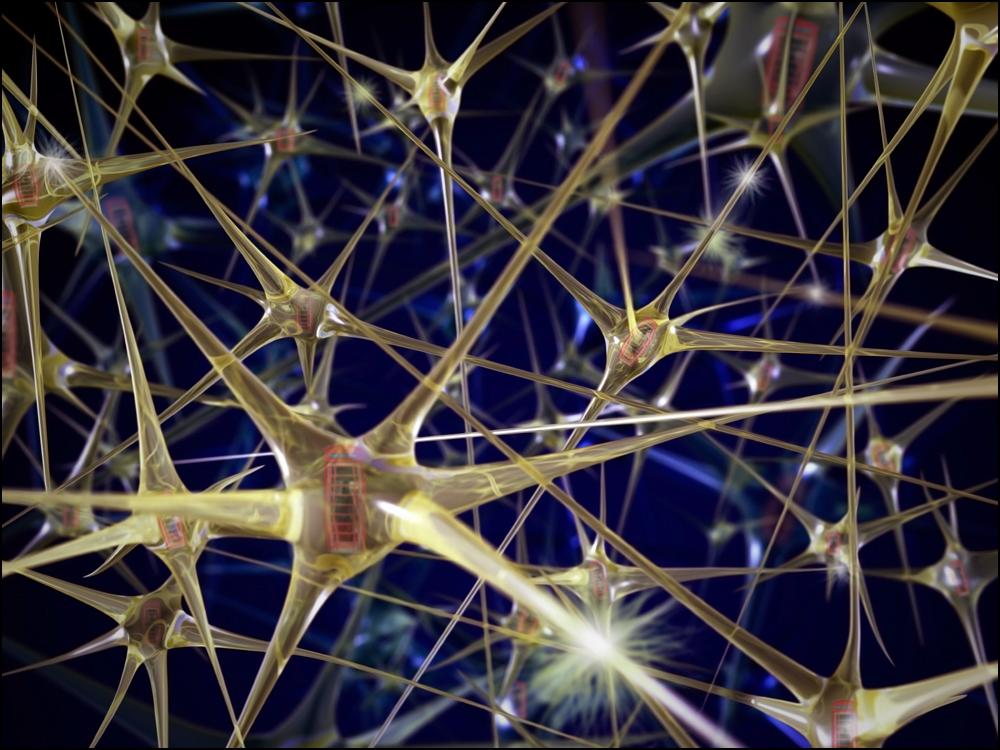 Neuronales Netzwerk