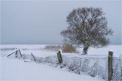 Neuschnee am Grimnitzsee