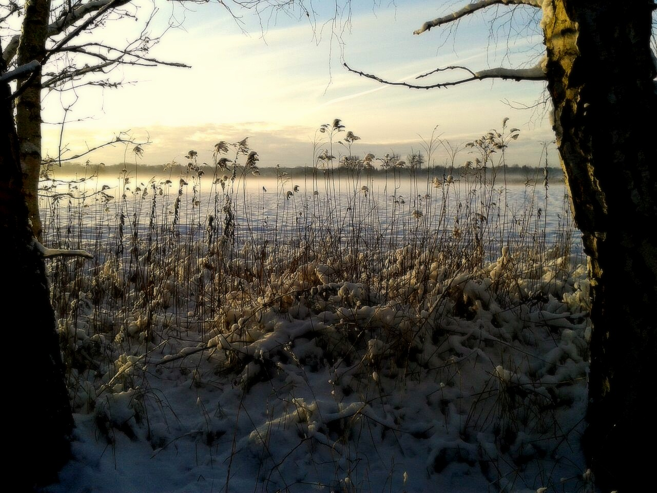 Neuschnee am Nachmittag