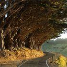 Neuseeland......