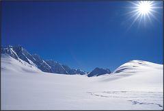 Neuseeland: auf dem Fox Glacier