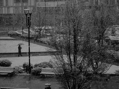 Neve al campus