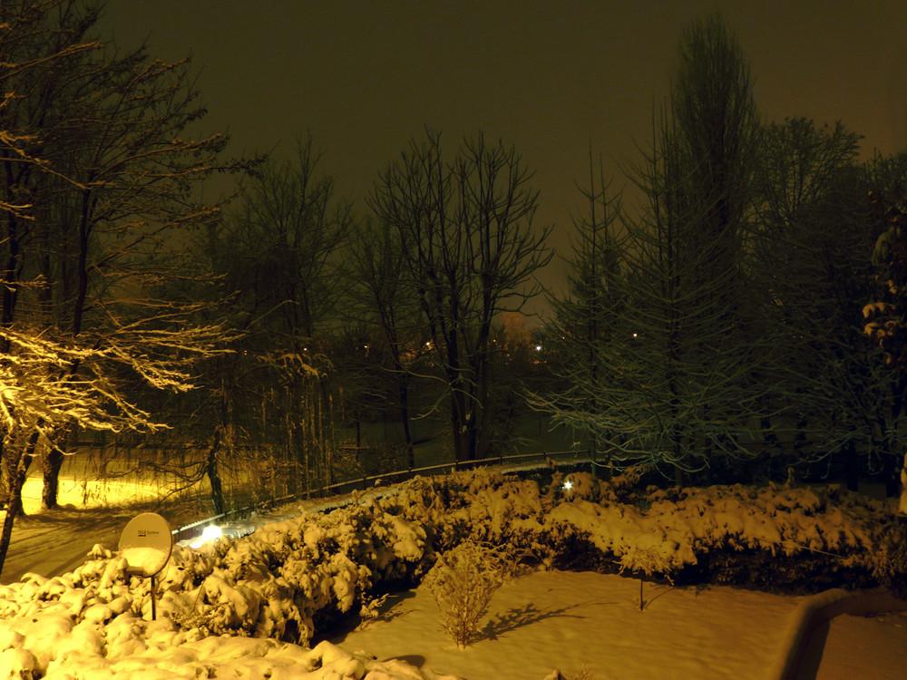 neve by night