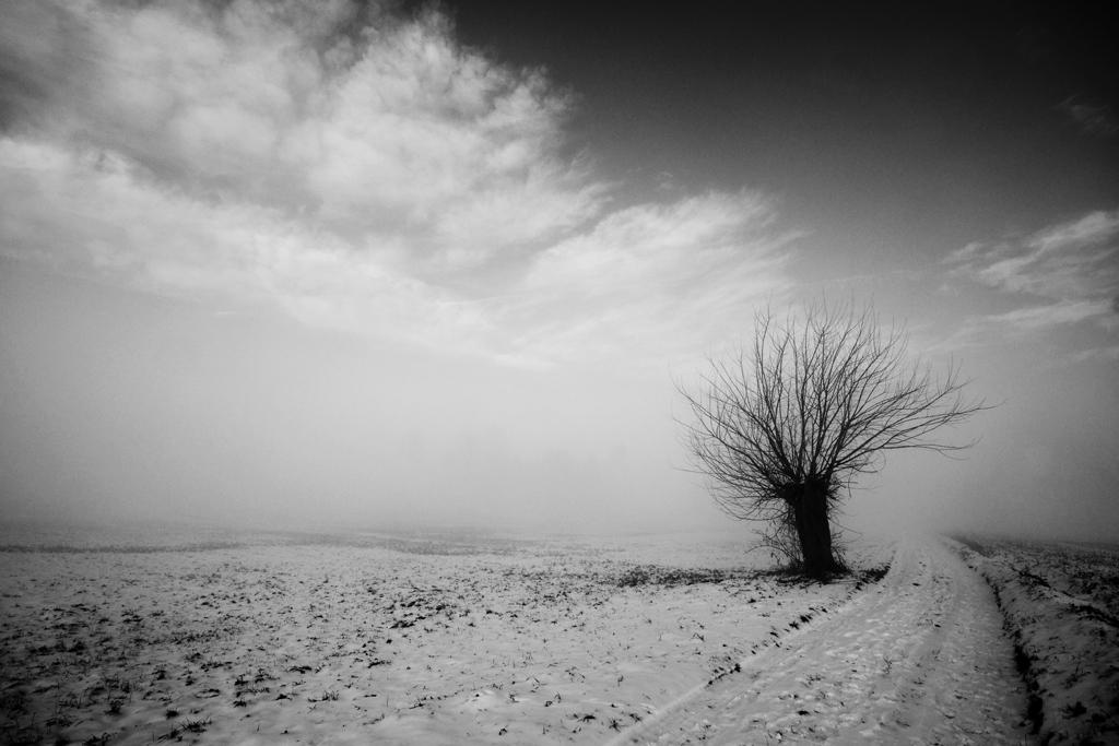 neve e nebbia 2