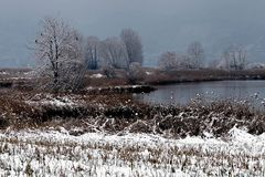 Neve in Franciacorta 6