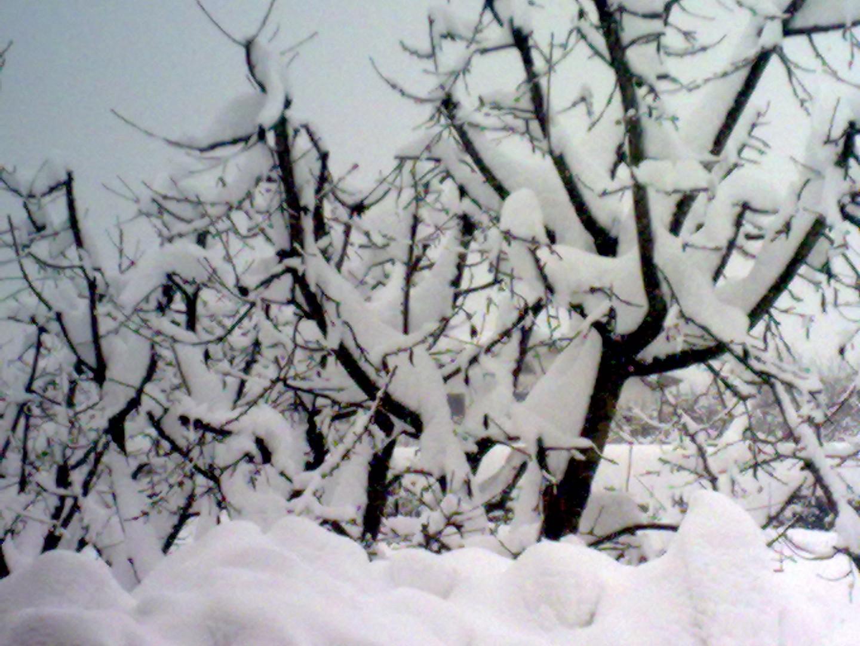 neve marzo 2010
