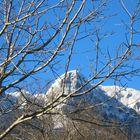 Neve sui monti Alburni /4