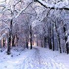 Nevicata 2006