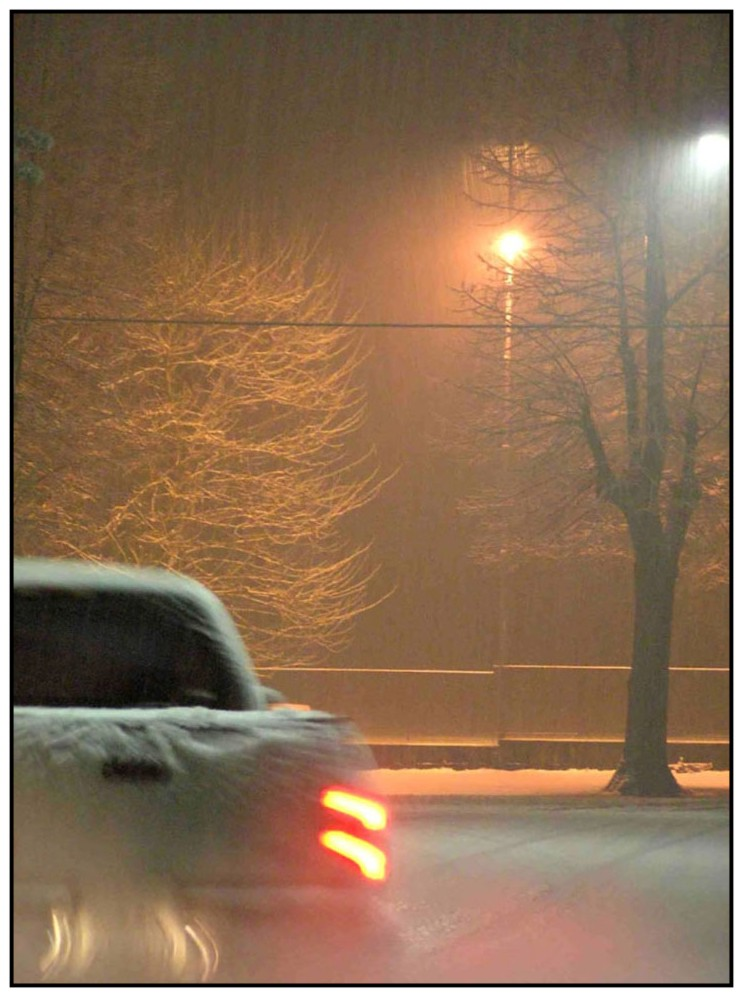 Nevicata a Somma