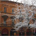 Nevicata alla bolognese X