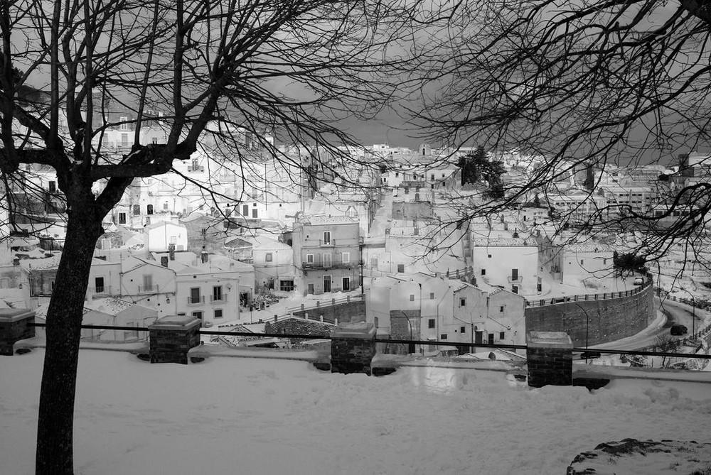 Nevicata sul Gargano (M.S.A.)