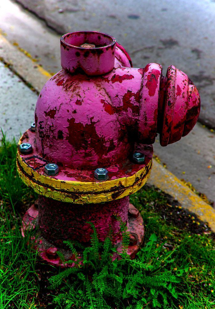 """"""" new bolts """", chicago, illinois"""