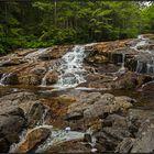 New Hampshire | Cascade Trail |