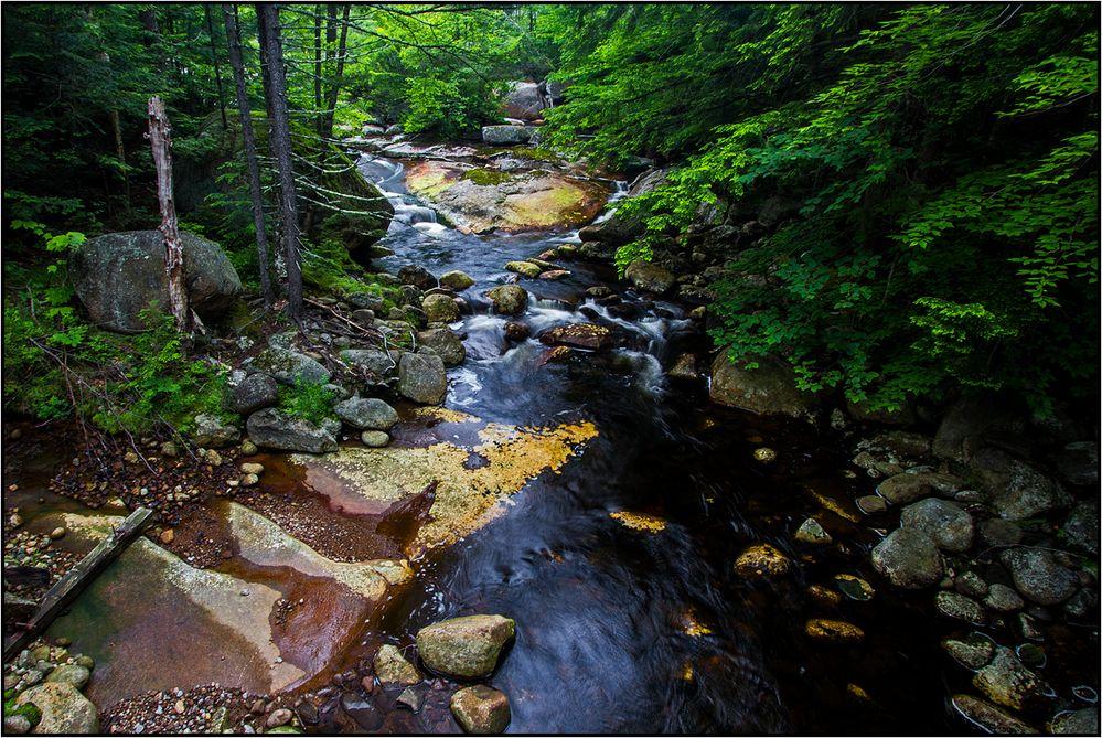 New Hampshire    Harvard Brook  