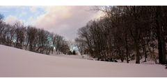 New Jersey Winter Landscape