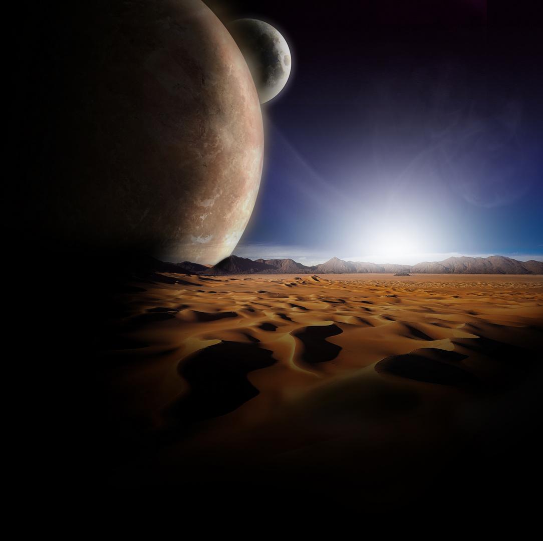 New Morning in the Desert