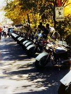 New York 1977 Marathon Play Ground