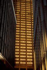 New York 1981 15