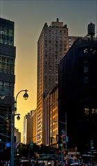 New York 44