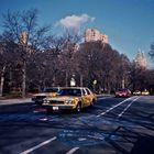 New York City, Central Park, 1989