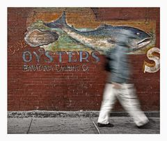 New York City - Oysters