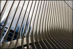 New York City | the oculus |