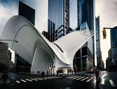 New Yorker Ansichten - Oculus (III)