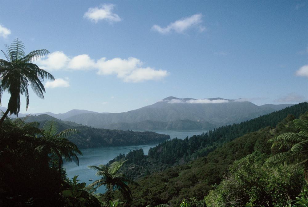 New Zealand - Marlborough Sounds - Queen Charlotte Track