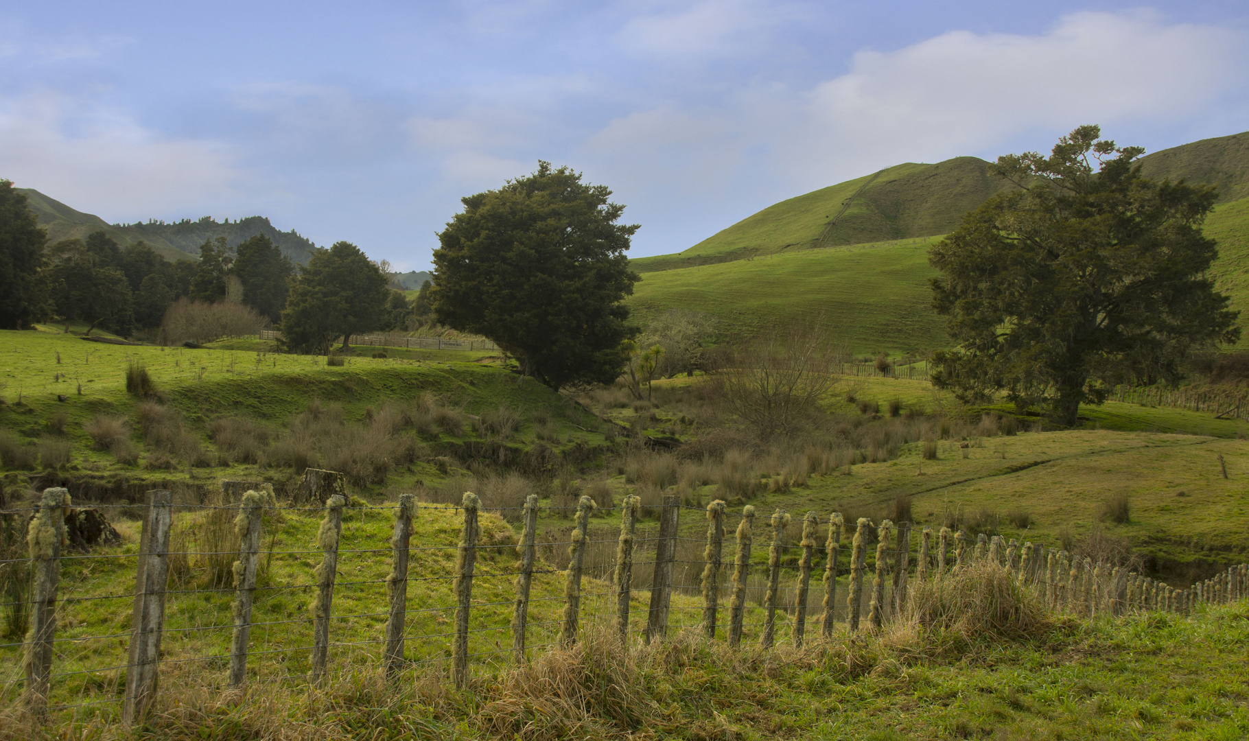 New Zealands beautifull hills