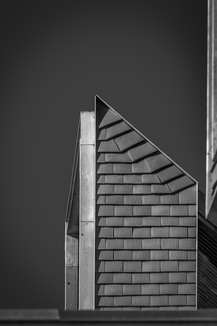 Newhall Monochrome