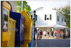 Newsstand - Duval Street
