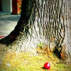 Newtonian apple...