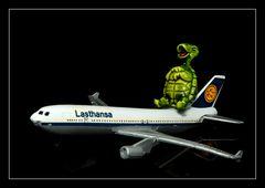 Next plane home *