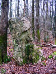 Nez de pierre