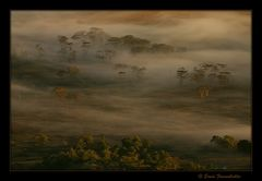 Ngorongoro 01