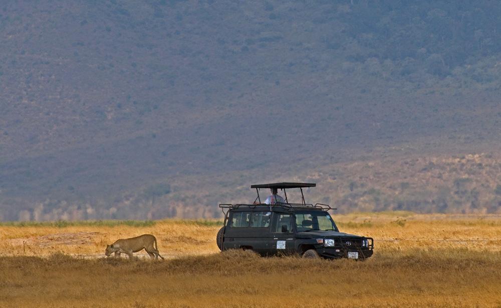 Ngorongoro Meeting