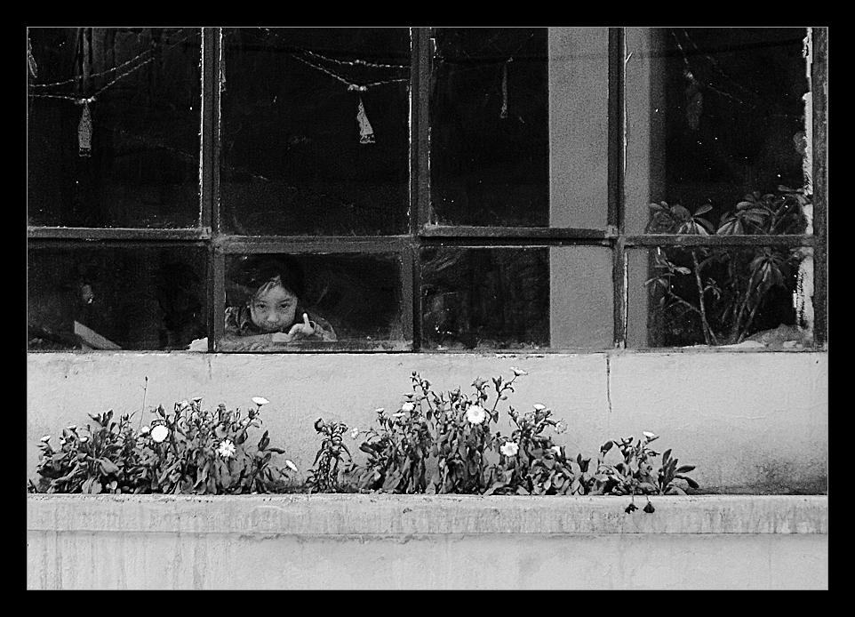 - niña en la ventana -