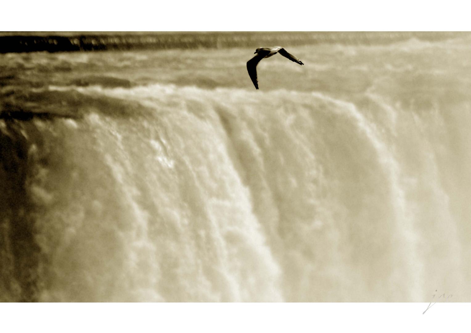 Niagara VII