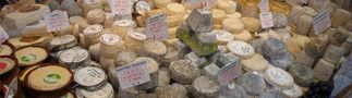 Nicht alles Käse von Franz Götz