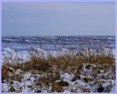 Nicht die Ostsee 1
