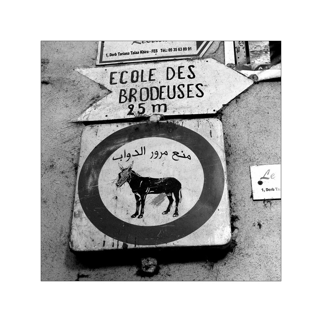 Nicht für Esel