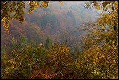 Nicht jeder Herbst ist so schön... (Variante 1)