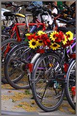 Nicht nur in Münster gibt es Fahrräder auch in München