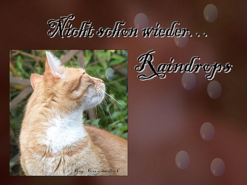 """""""Nicht schon wieder... Raindrops"""""""