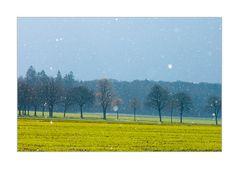 ...nicht Winter, nicht Frühling... - ...leise rieselt der Schnee...
